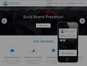 professional website design for blue tower consulting group